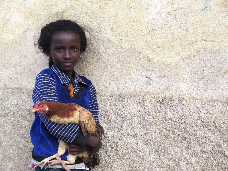 OK Sonia Costa_The girl, the cross and the hen