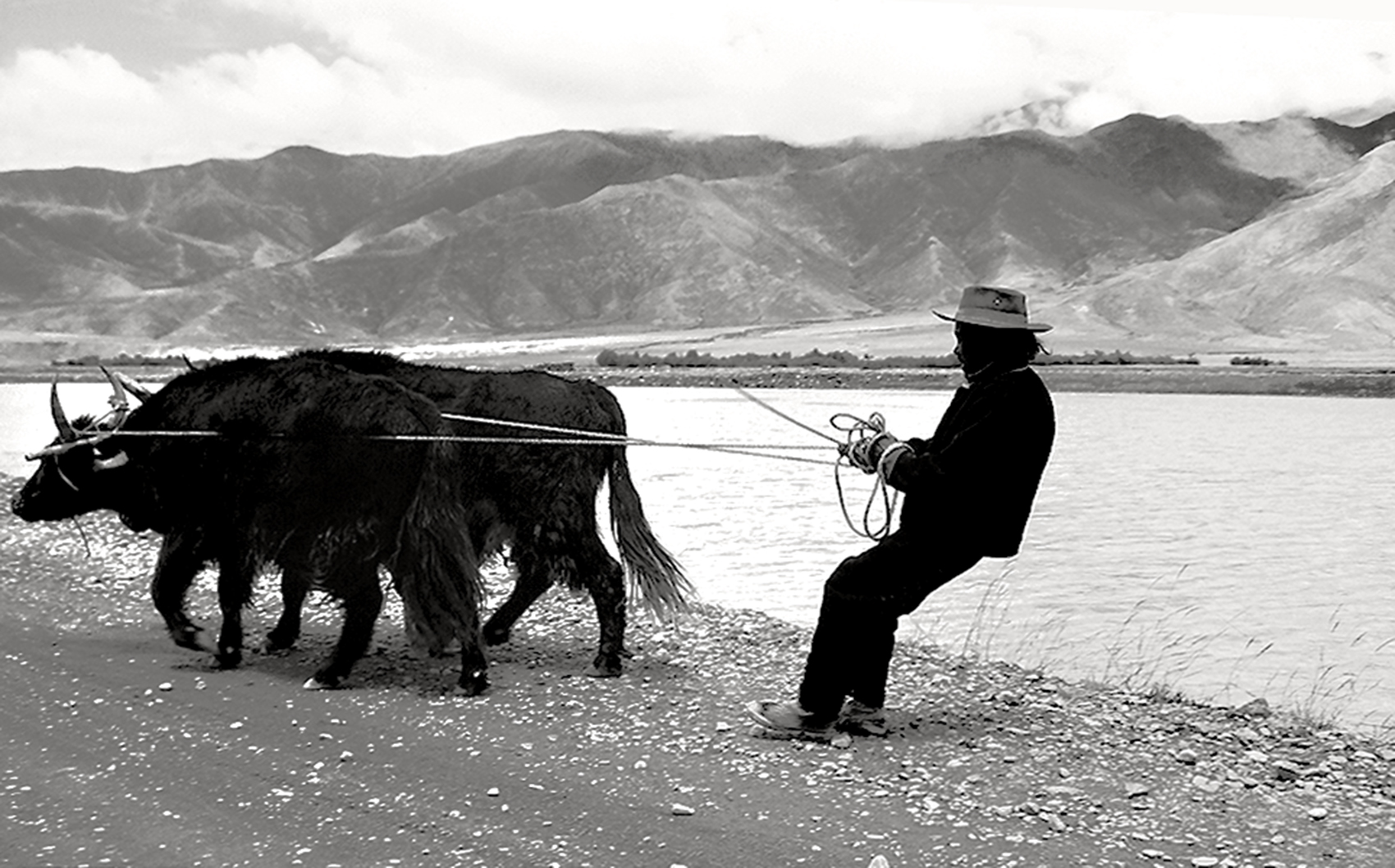misure giuste N Costa-Sonia_Tibetan Plateau