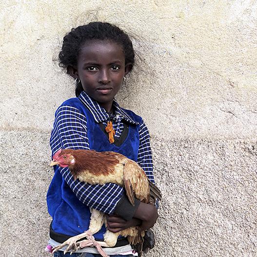 PORTFOLIO Sonia Costa_The girl, the cross and her hen