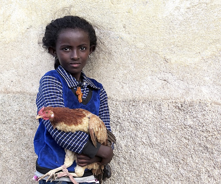 sito Sonia Costa_The girl, the cross and the hen (2)