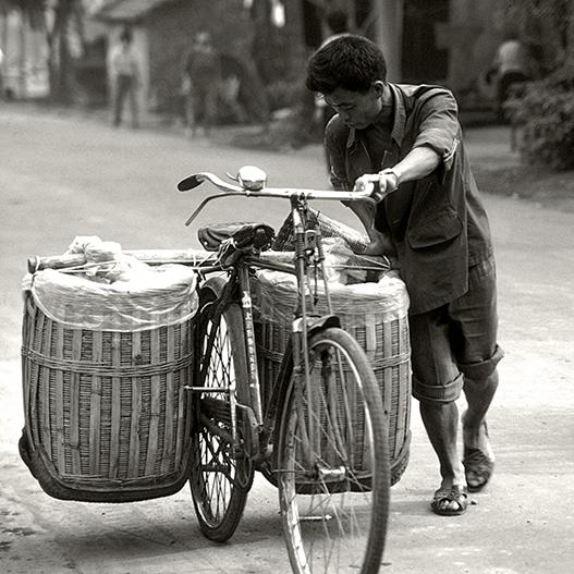 trasporto con bicicletta Chengdu, Sichuan, Cina