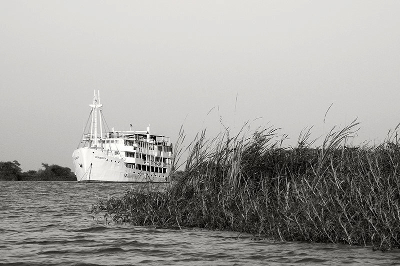 1 Sonia Costa _ A river to survive