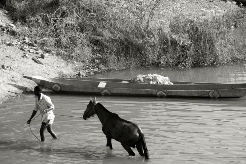 6 Sonia Costa_ A river to survive